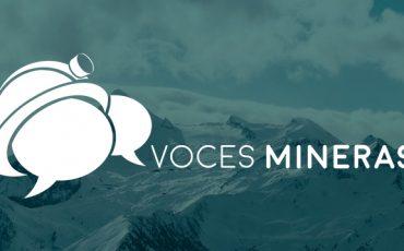 Voces Mineras llama a legislar con responsabilidad